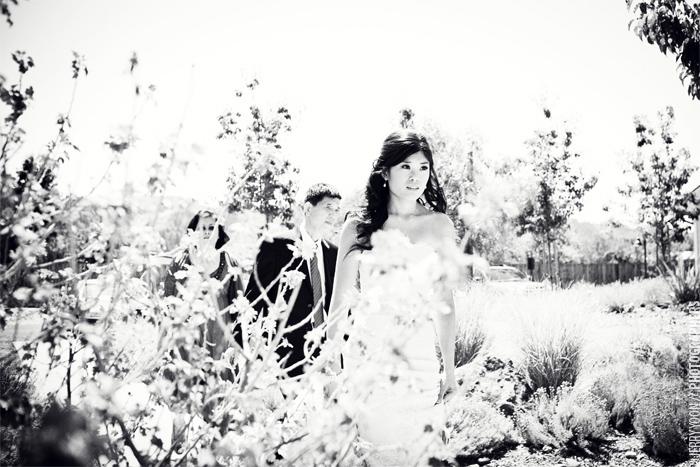 Solage_Callistoga_Resort_Winery_Wedding_Photography-05.JPG