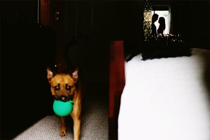 Dog_Engagement_Session_San_Francisco-03.JPG
