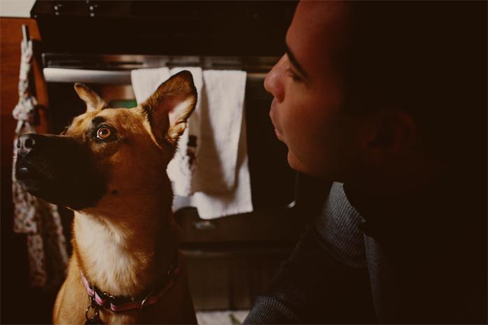 Dog_Engagement_Session_San_Francisco-05.JPG