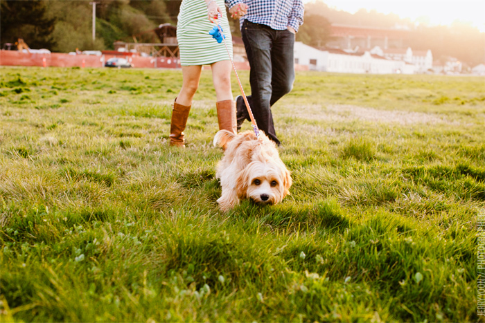 San_Francisco_Engagement_Photographer_Annie_Todd-04.JPG