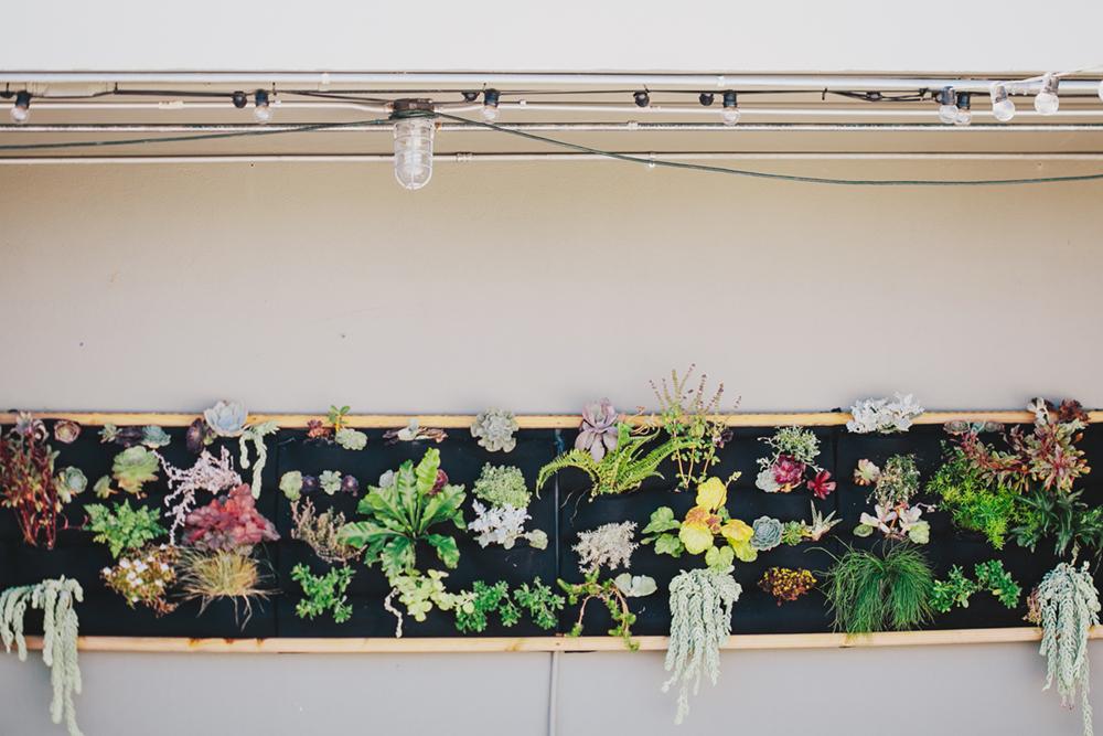 Aracely-Restaurant-Treasure_island-wedding-details-09.JPG
