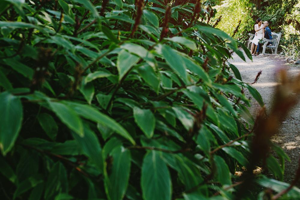 UC-Botanical-Garden-Mather-Redwood-Grove-Wedding-11.JPG