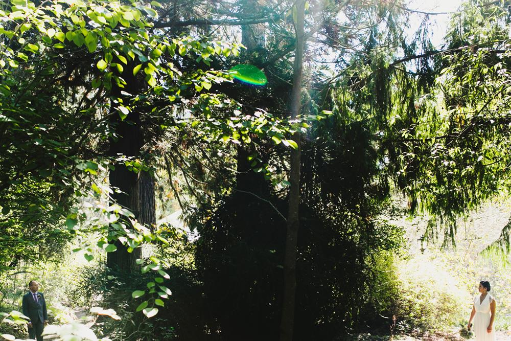 UC-Botanical-Garden-Mather-Redwood-Grove-Wedding-14.JPG