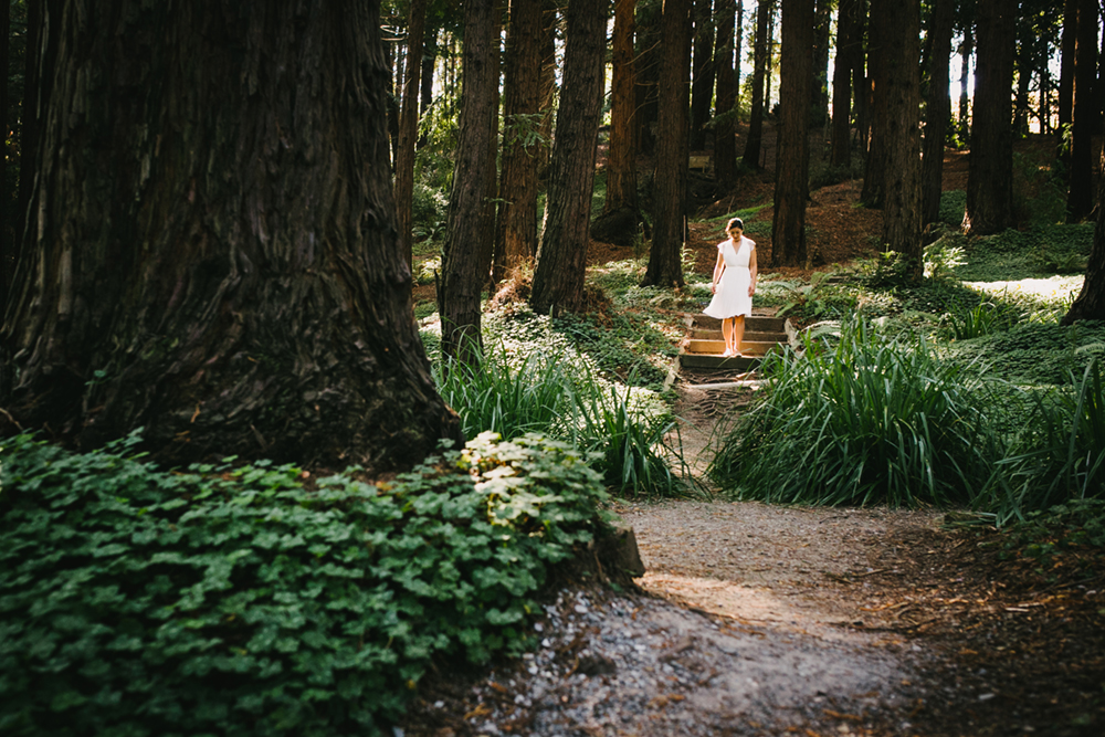 UC-Botanical-Garden-Mather-Redwood-Grove-Wedding-17.JPG