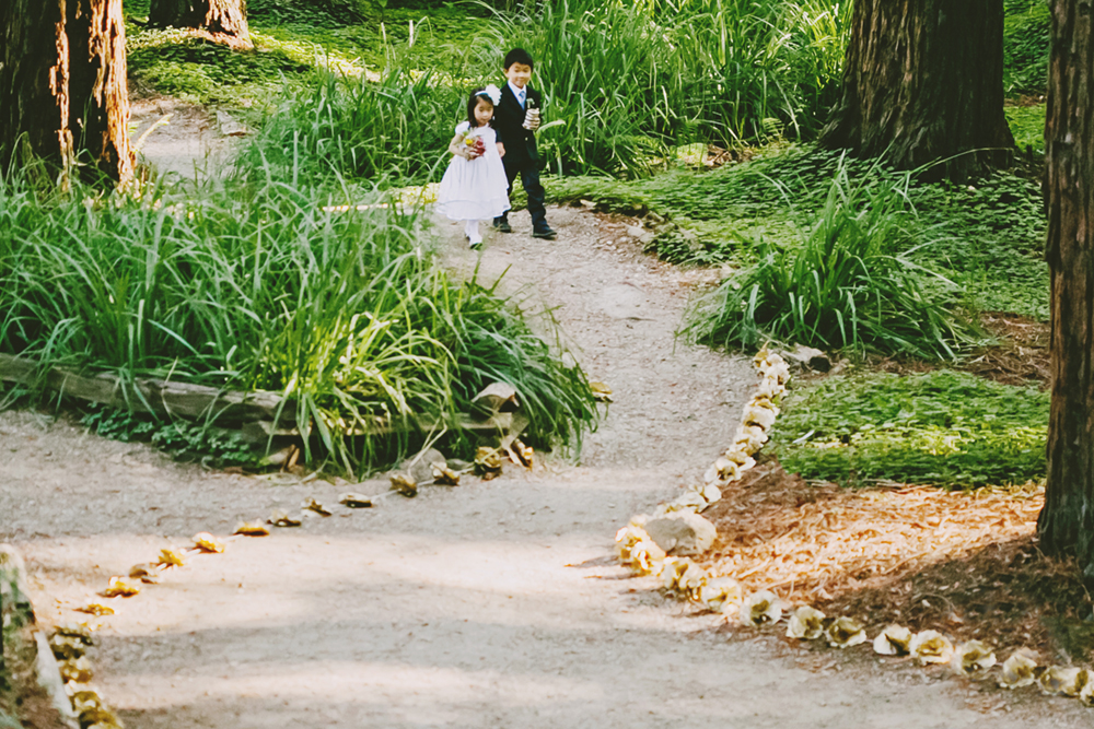 UC-Botanical-Garden-Mather-Redwood-Grove-Wedding-18.JPG