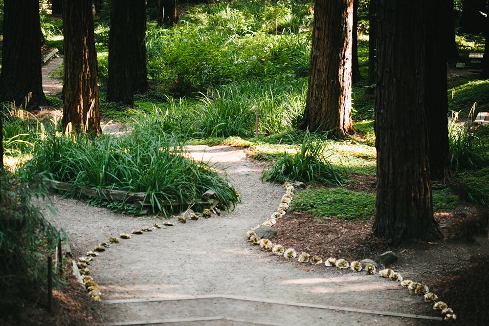 UC-Botanical-Garden-Mather-Redwood-Grove-Wedding-Details-18.JPG