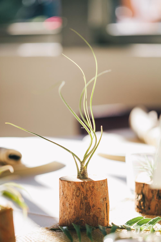 UC-Botanical-Garden-Mather-Redwood-Grove-Wedding-Details-27.JPG