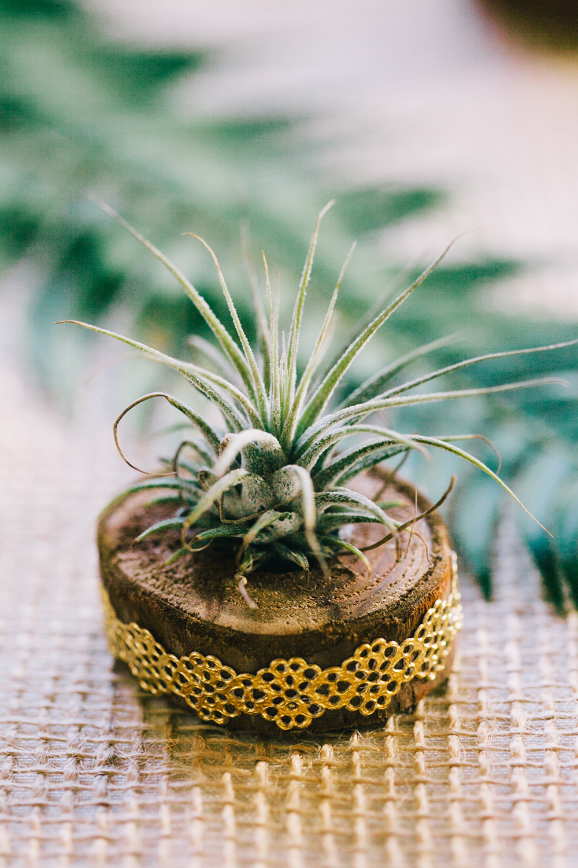 UC-Botanical-Garden-Mather-Redwood-Grove-Wedding-Details-28.JPG