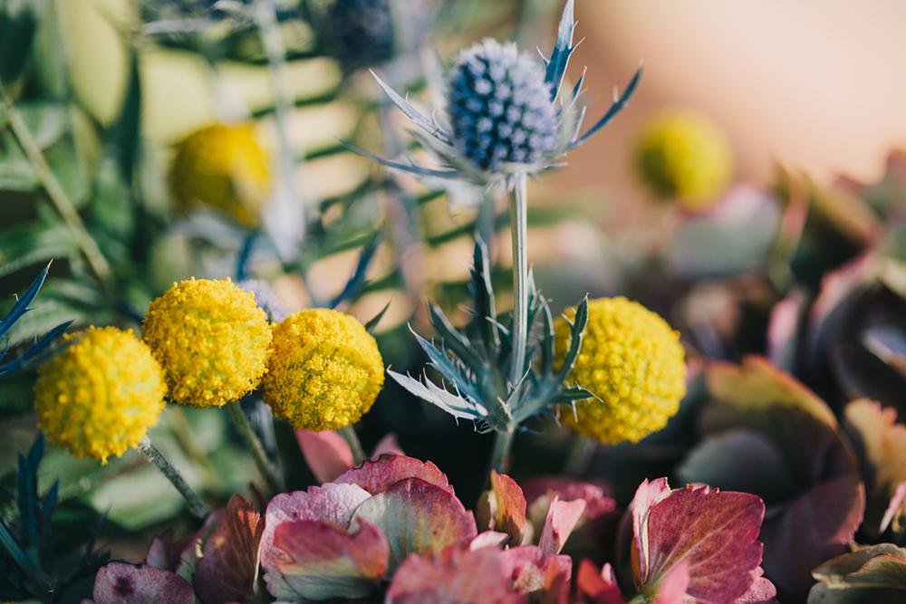 UC-Botanical-Garden-Mather-Redwood-Grove-Wedding-Details-31.JPG