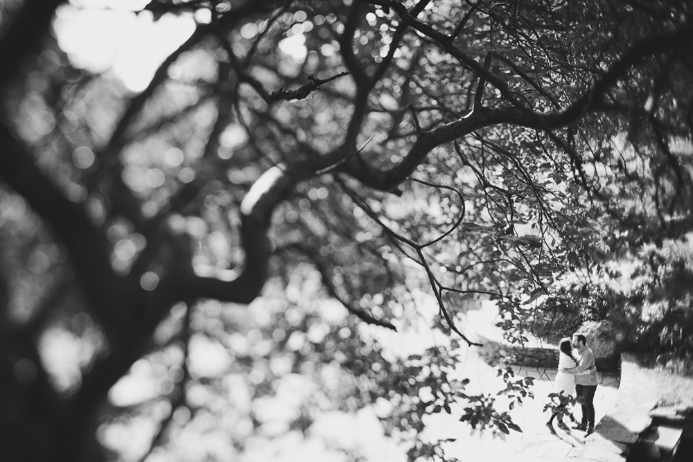 Redwood-Joaquin-Miller-Park-Engagement-Photography-03.JPG
