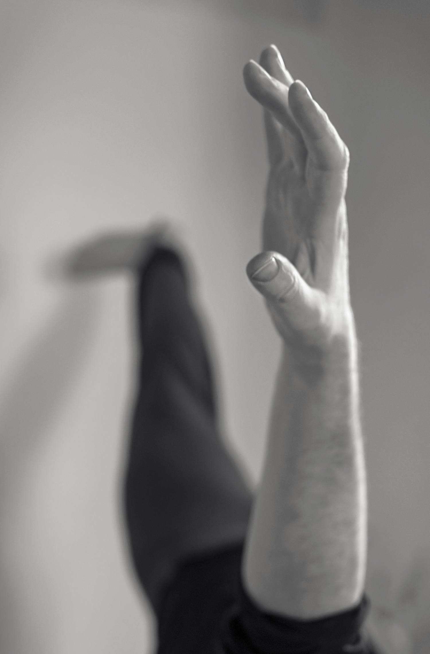 Fluid Yoga (root) — Florian Ulbricht