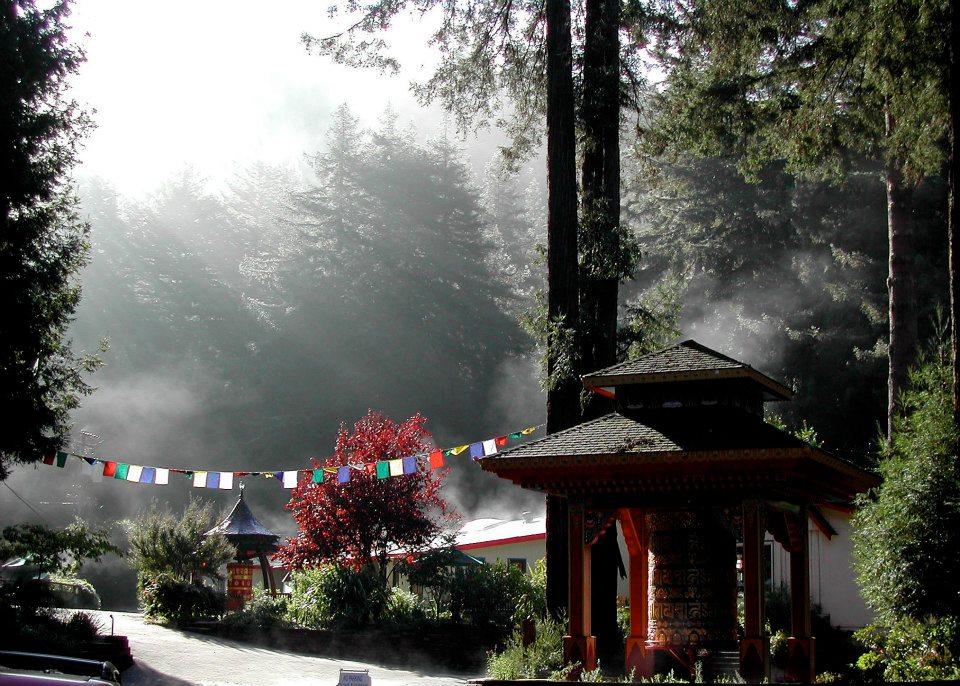 the-morning-mist.jpg