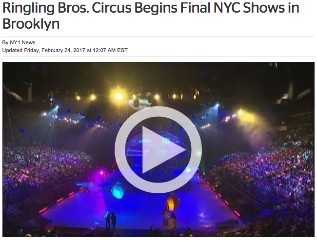 NY1 (video):  Ringling Begins Final Run of Shows...