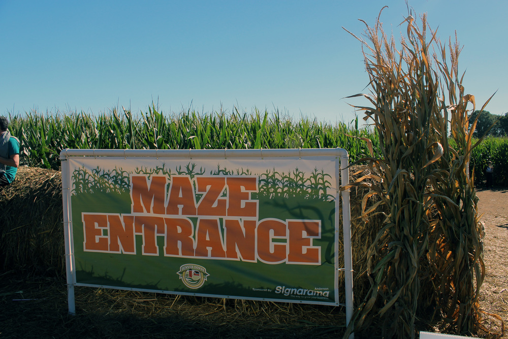 Up to the Challenge of the corn maze?