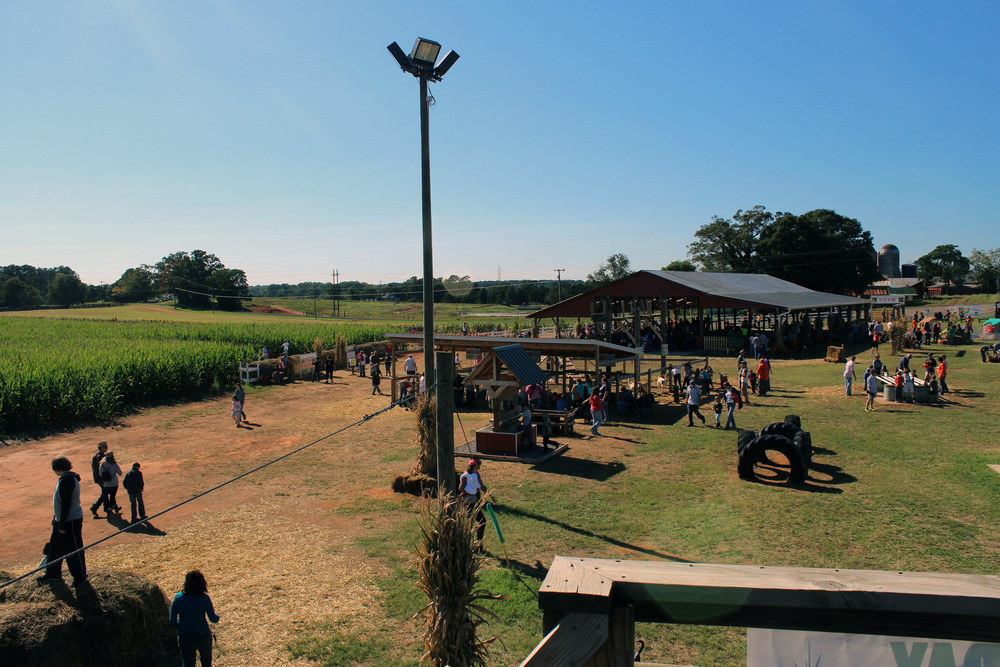 The Denver Downs corn maze, about an hour away from NGU, is a popular place to be on the weekends.