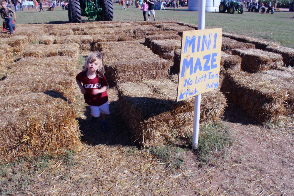 Not up to the full-size corn maze? You can tackle the mini-maze.