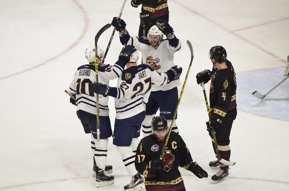 Photo from www.swamprabbits.com