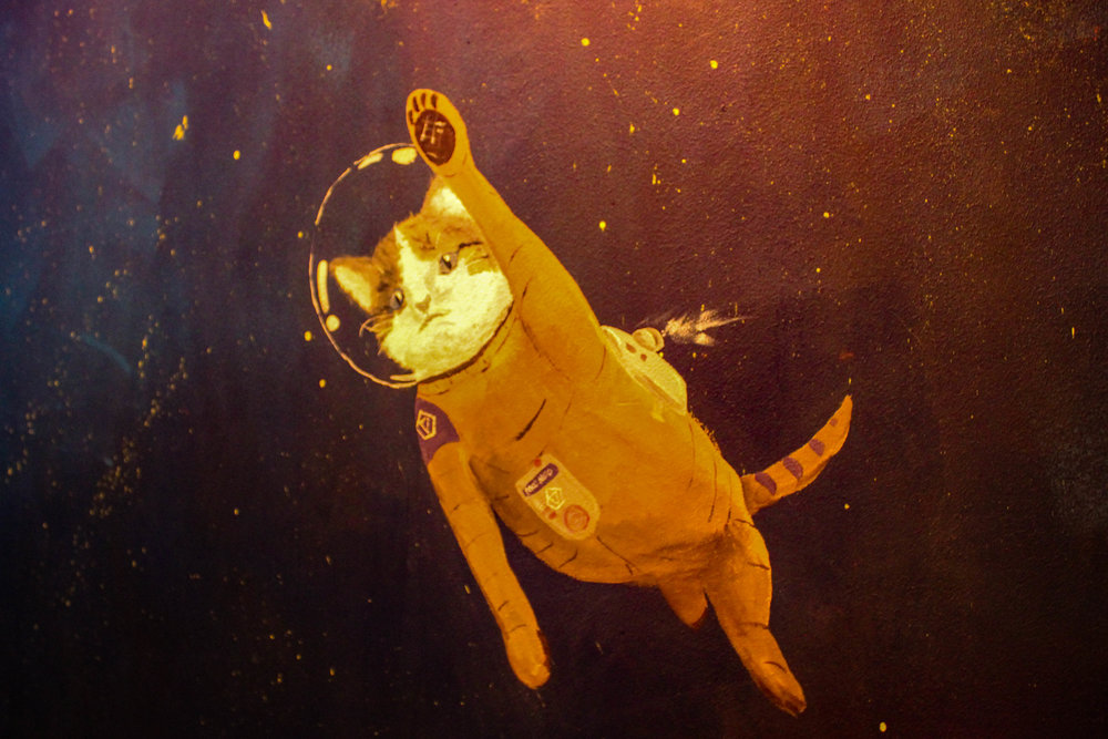 Along the walls leading up to the second floor there were cats painted as astronauts.