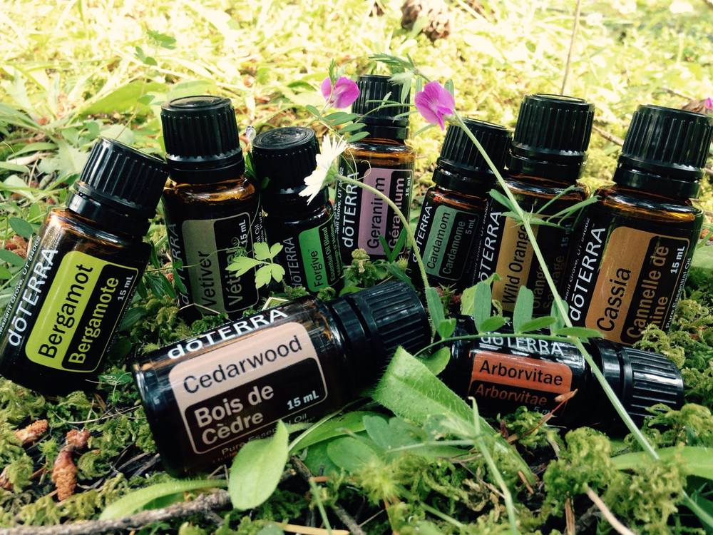 There are no coincidences - all at once I received an order of oils that smell like the forest I live in! We always get the medicine that we need, and certainly we are held by the energy of the trees.  As soon as I held the bottle of Cedarwood, my intuition told me to put it on my sore muscles and within 1-2 minutes tightness and soreness was gone! Quite amazing and unexpected! Now I am truly ready for today's yoga practice - Cedarwood on the shoulders and neck, Vetiver on the soles of my feet, and Geranium & Ylang Ylang in the diffuser... Bergamot and Cardamom in my tea tonight! It suddenly is so easy to live like a Forest Fairy Goddess! Aho!