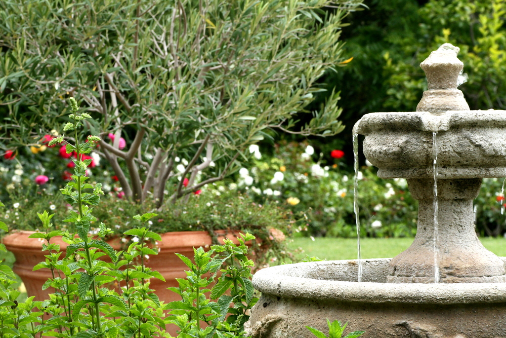 Fountain 1.JPG