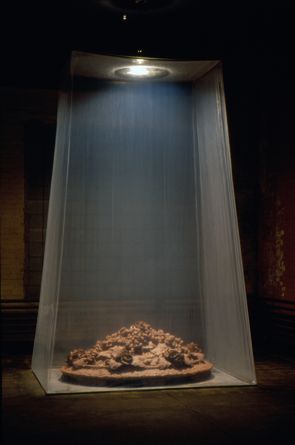 Fecundity in Absence, 1995