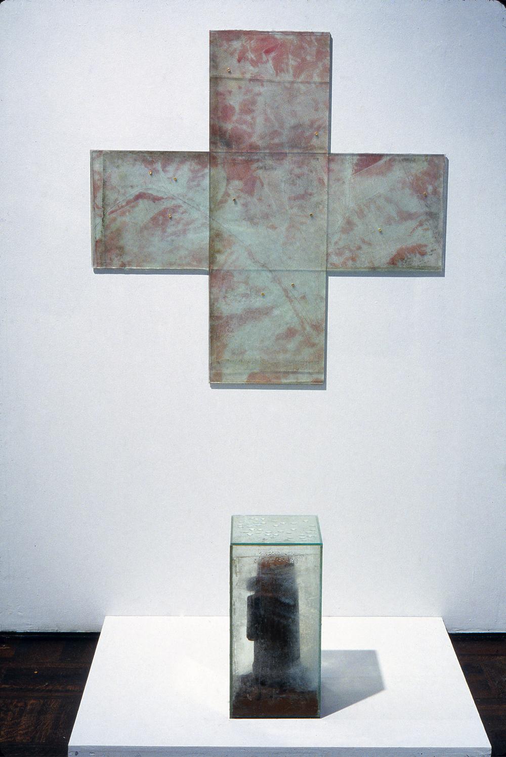 Transfusion, 1993