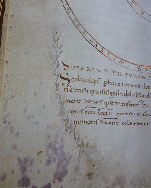 Detail of a parchment repair from an 11th century manuscript. Image by Libby Melzer.