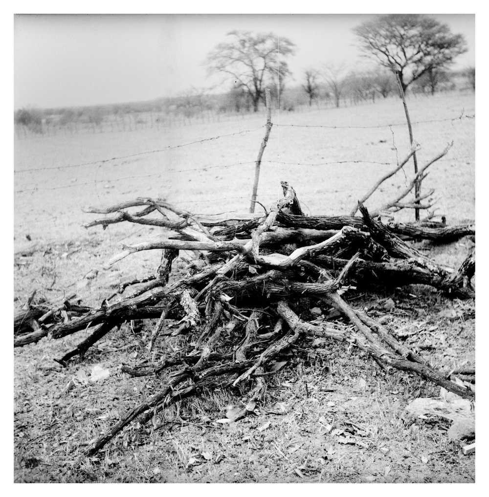 African Photography Network Mpho Mokgadi2.jpg