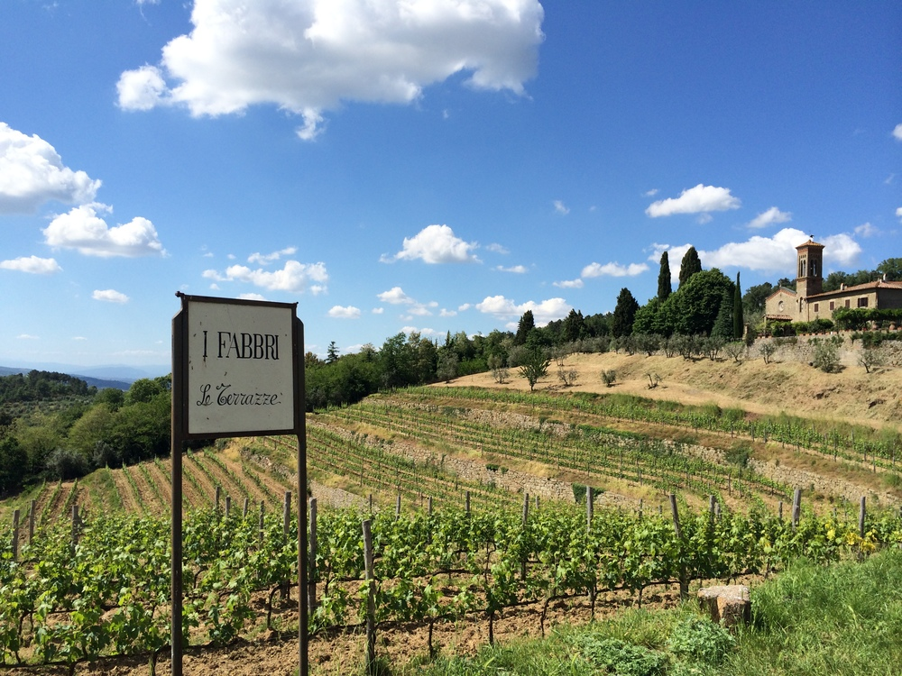 Best Tuscany Wine Tour - Tuscany countryside