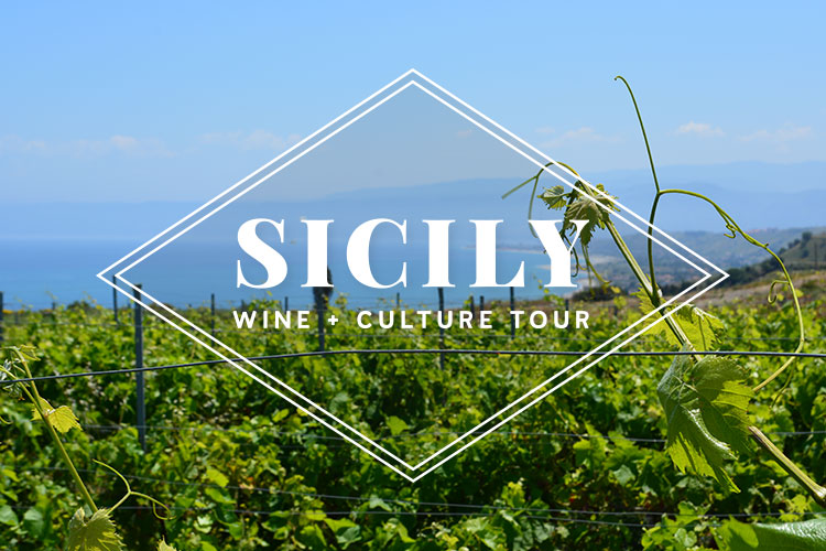 Sicily Wine Tour - La Dolce Vigna Wine Tours