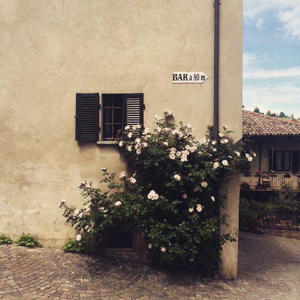 Best Piemonte Wine Tour - Barolo Town Centerwn