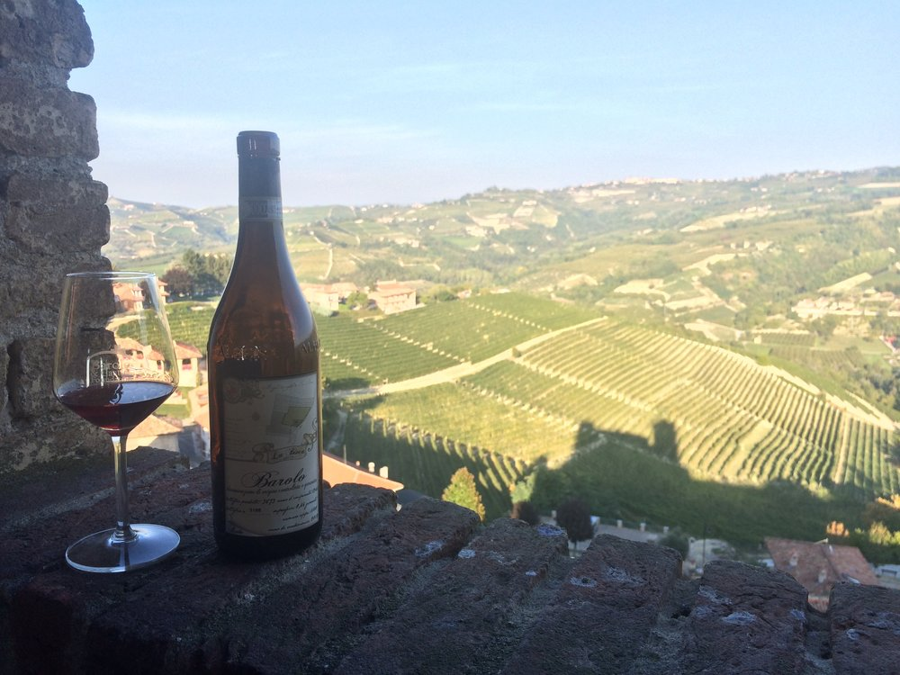 Copy of Best Piemonte Wine Tour - Wine Tasting in a Castle