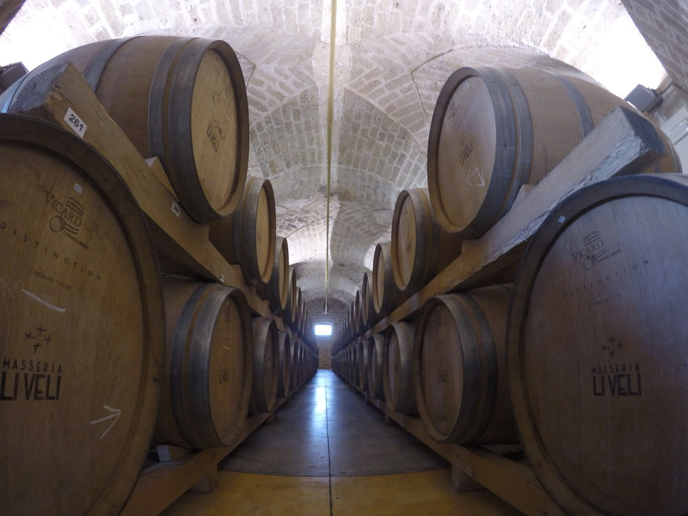 La Dolce Vigna_Puglia Wine Tour_Winery