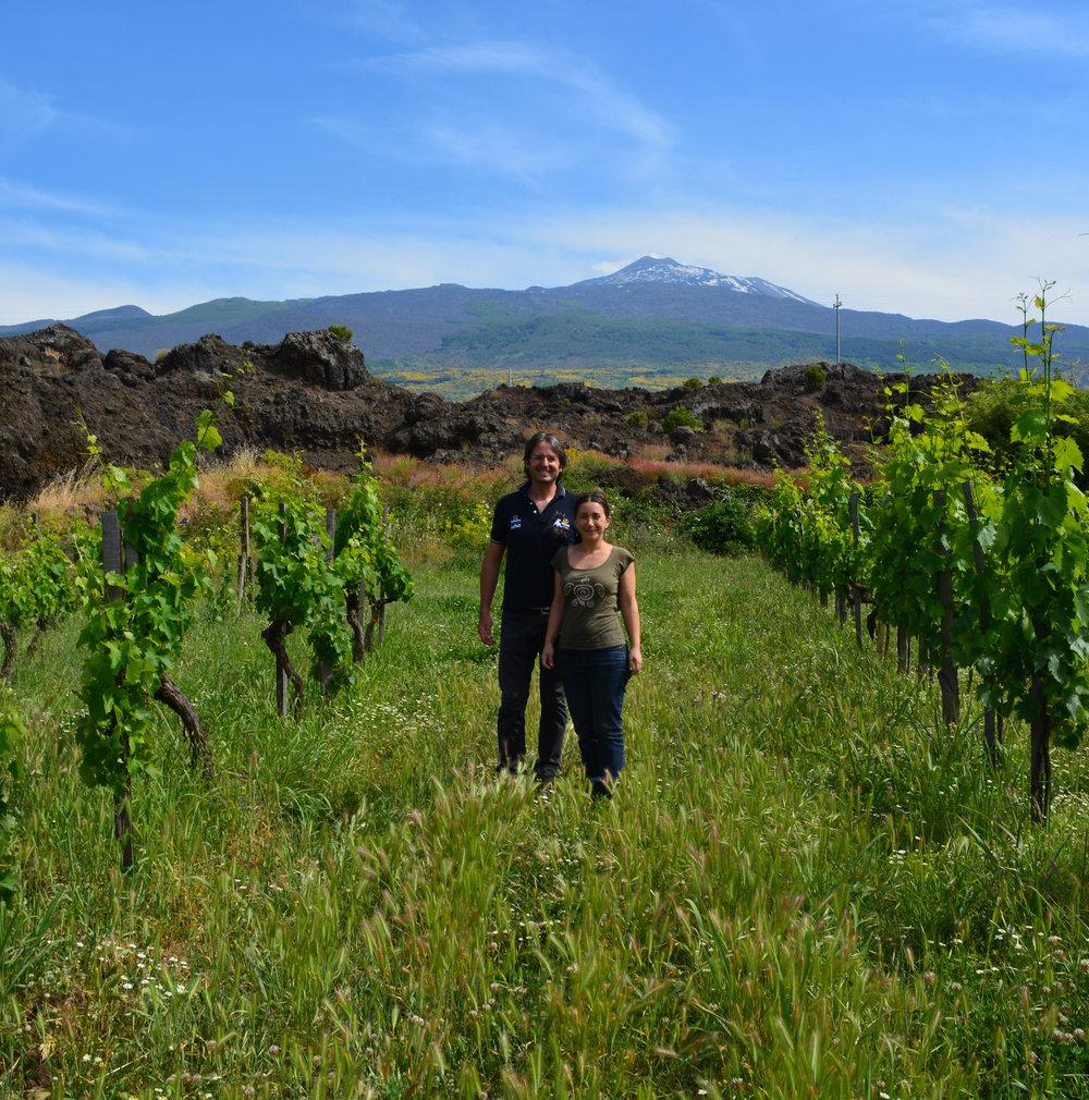 La-Dolce-Vigna_Sicily-Wine-Tour_10.jpg