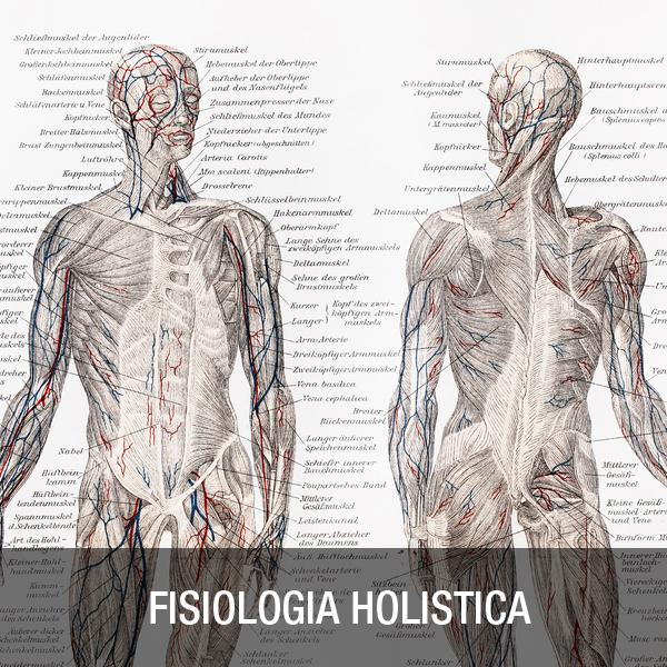 Fisiología Holística