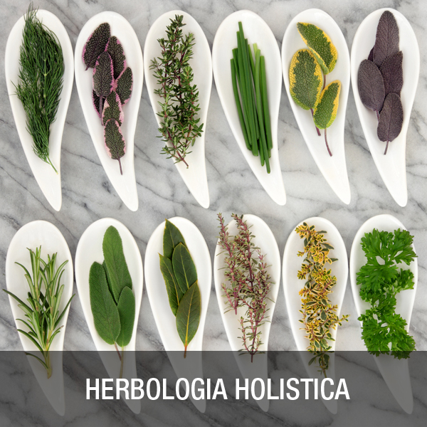 Herbología Holística
