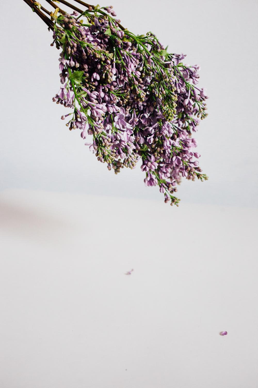Christina-Hussey-Photography-137.jpg