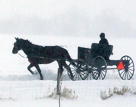 amish snow.jpg