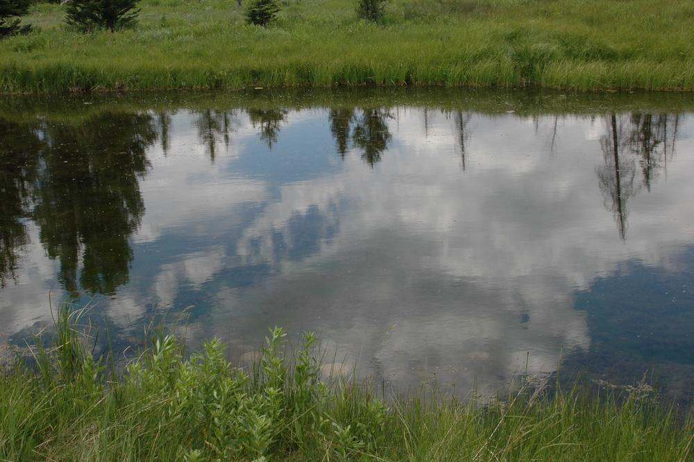 CLOUDS IN WATER DSC_4498.jpg