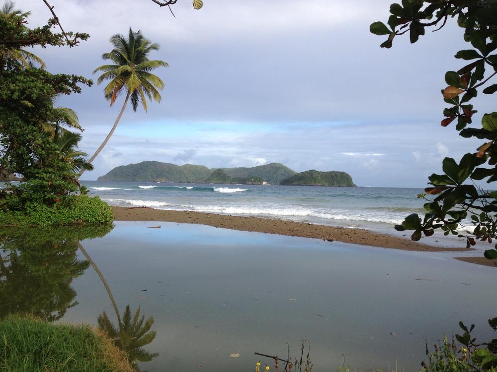 Little Tobago Island, Tobago