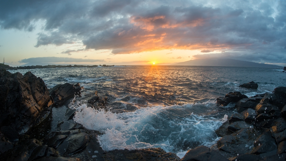 Maui 2 630.jpg