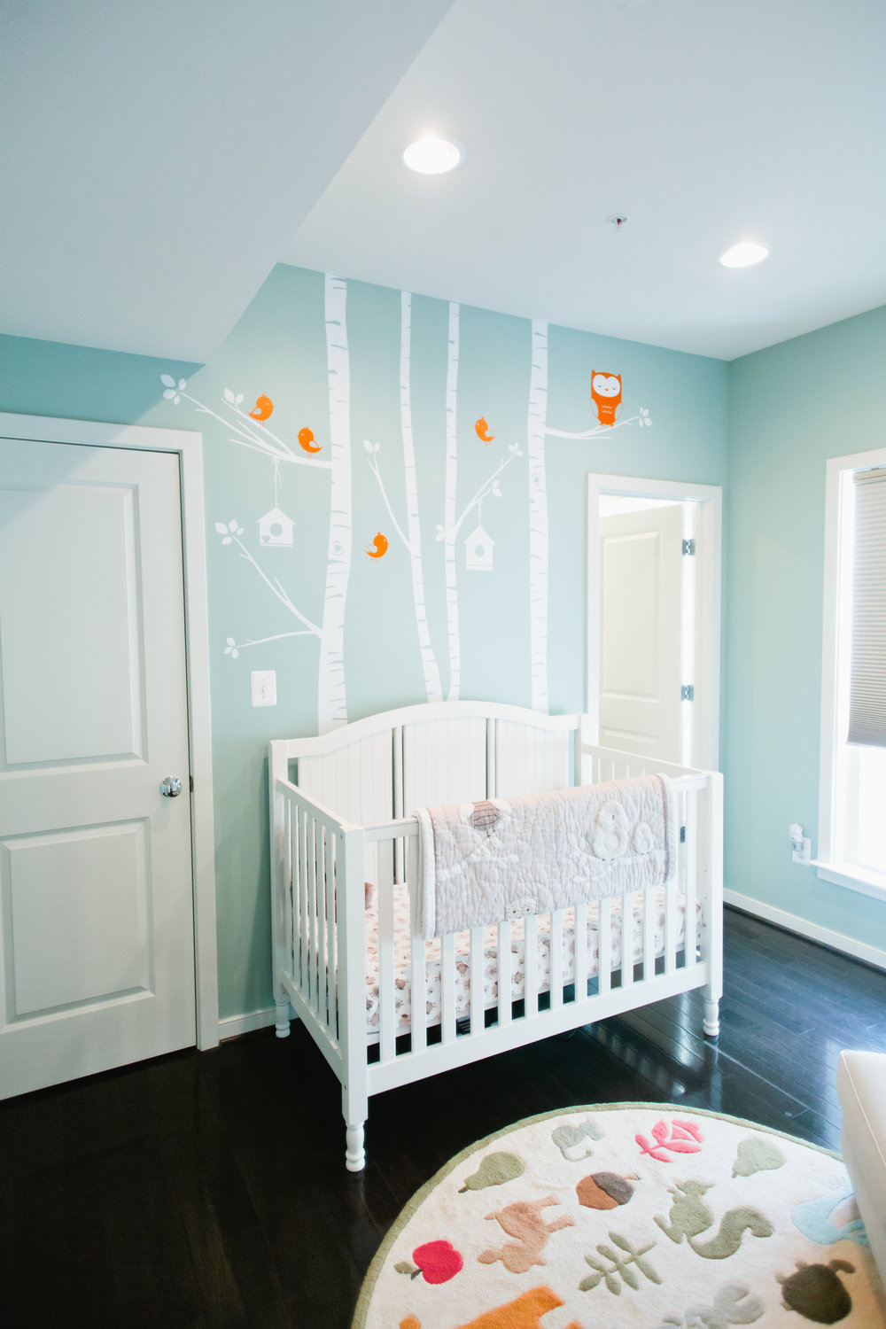 Boy's Nursery_2_DiSabellaDesign.jpg