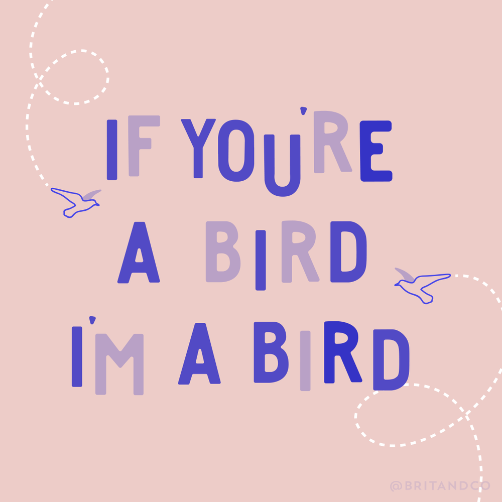 01112017-If-You're-A-Bird.png