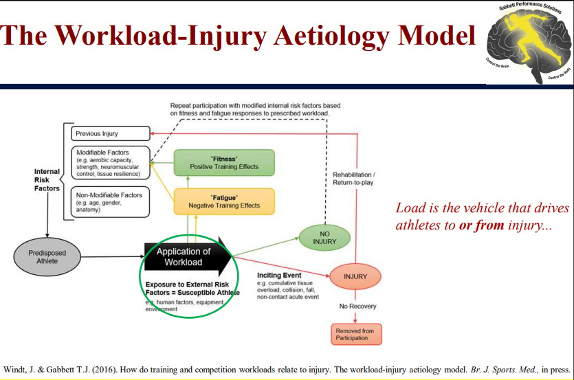 Figure A: Modified Workload Injury Aetiology Model