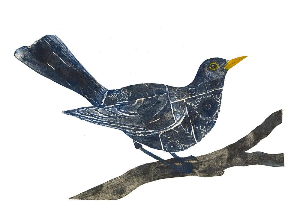 blackbirdsmaller.jpg
