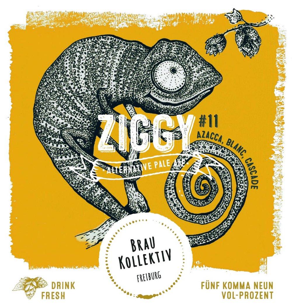 Ziggy11Label.jpg