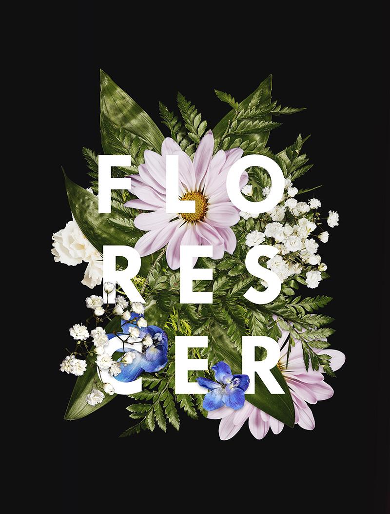 Florescer - Art Print