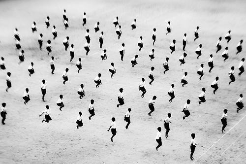 (photo by  David Kawabata  )
