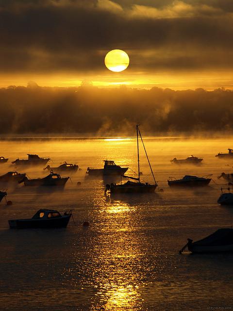 travelthisworld :     Exe Estuary, Starcross, Devon, England by Dave J Glaves