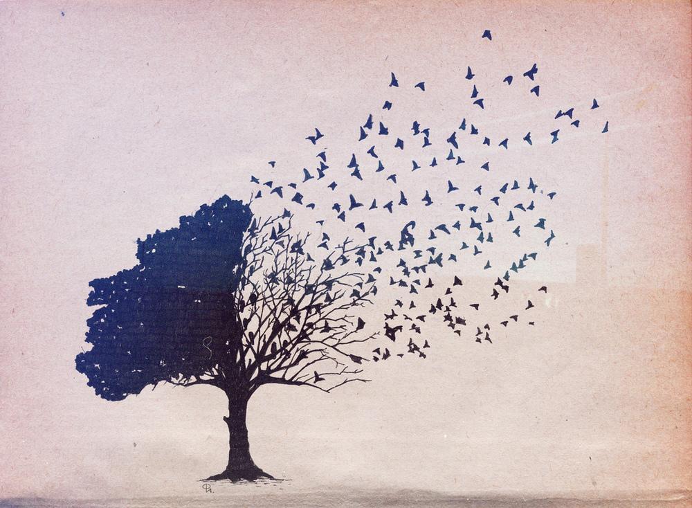 gatekeeper: autumnalhymn:woodcum